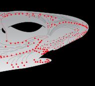 Shark electroreceptors